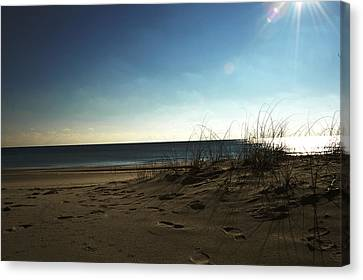 Destin Beach Sun Glare Canvas Print by Donald Williams