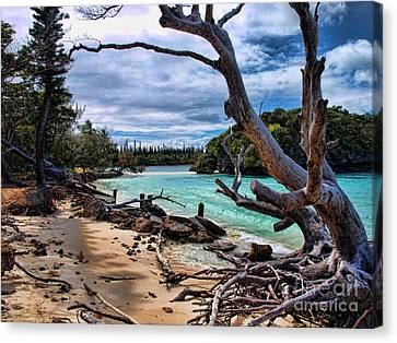 Canvas Print featuring the photograph Destruction by Trena Mara