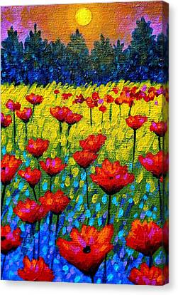 Detail From Twilight Poppies  Canvas Print by John  Nolan