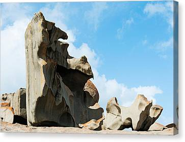 Detail Of Remarkable Rocks, Flinders Canvas Print by Panoramic Images