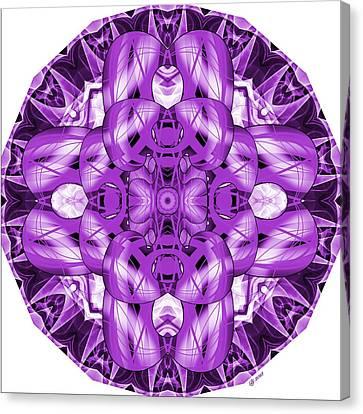 Details 6 Canvas Print