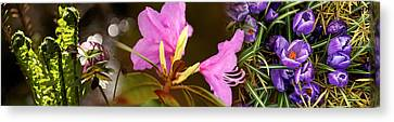 Early Spring Canvas Print - Details Of Early Spring And Crocus by Panoramic Images
