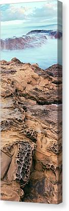 Roca Canvas Print - Details Of Rock On The Coast, Las Rocas by Panoramic Images