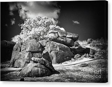 Devils Den - Gettysburg Canvas Print by Paul W Faust -  Impressions of Light