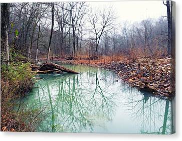 Devil's Den Still Water Canvas Print by Tanya Harrison