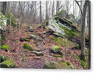 Devil's Den Stone Stairs In Autumn Canvas Print by Tanya Harrison