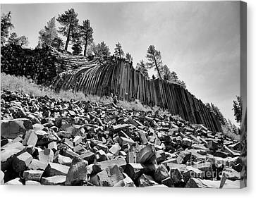 Devils Postpile National Monument Canvas Print by Terry Garvin