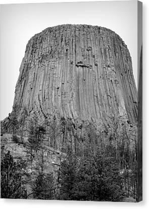 Devils Tower National Monument Bw Canvas Print by Elizabeth Sullivan