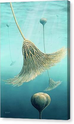 Devonian Crinoid Illustration Canvas Print