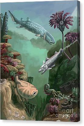 Devonian Period Canvas Print by Spencer Sutton