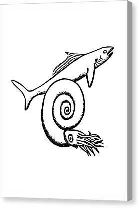 Devonian Shark And Ammonoid Canvas Print by Richard Bizley