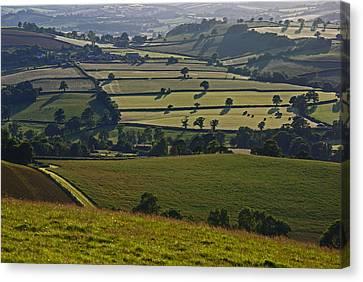 Devonian Tapestry Of Fields Canvas Print by Pete Hemington