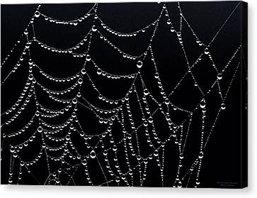 Canvas Print featuring the photograph Dew Drops On Web 2 by Marty Saccone