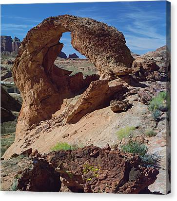 Diagenetic Arch-sq Canvas Print