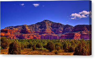 Diamondback Gulch Near Sedona Arizona Iv Canvas Print by David Patterson