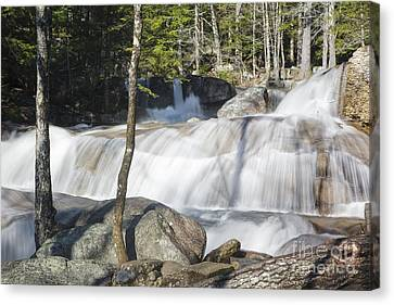 Dianas Bath - North Conway New Hampshire Usa Canvas Print by Erin Paul Donovan