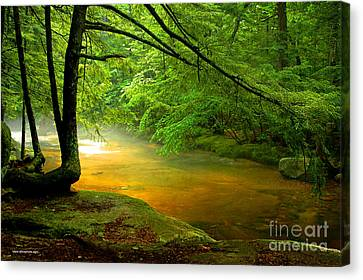 Diana's Bath Stream Canvas Print by Alana Ranney