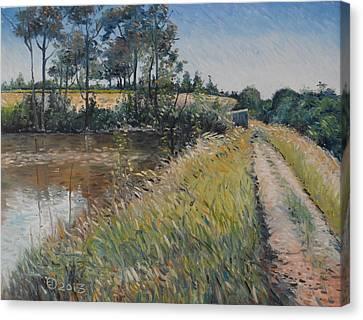 Diemersfontein Dam Western Cape South Africa Canvas Print by Enver Larney