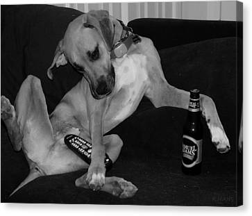 Diesel In Black And White Canvas Print by Rob Hans