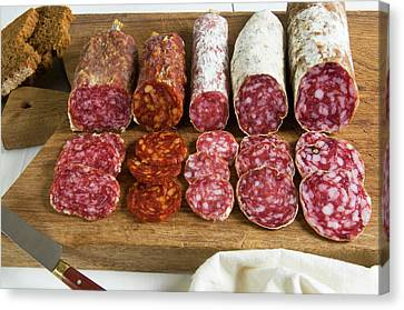 Different Type Of Tuscan Salami Canvas Print