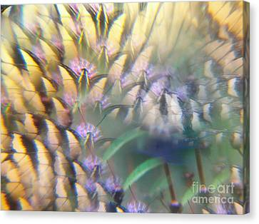 Digital Art Abstract With Swallowtail Canvas Print