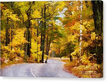 Canvas Print featuring the photograph Fall Colors by David Perry Lawrence