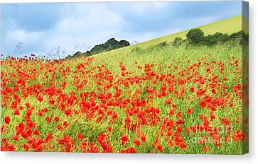 Digital Art Field Of Poppies Canvas Print by Natalie Kinnear