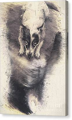 Digital Artwork Of A Mini Fox Terrier Dog Canvas Print by Jorgo Photography - Wall Art Gallery