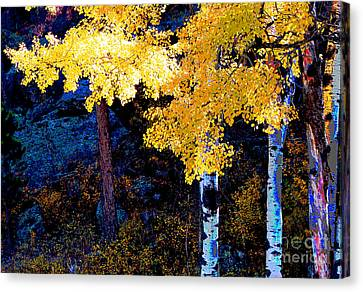Digital Aspen Canvas Print