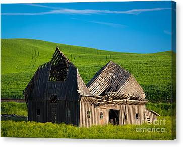 Dilapidated Barn Canvas Print by Inge Johnsson
