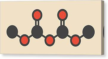 Dimethyl Dicarbonate Molecule Canvas Print