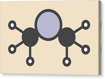 Dimethylmercury Molecule Canvas Print