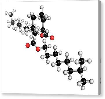 Dinch Plasticizer Molecule Canvas Print by Molekuul