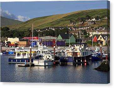 Dingle Harbour County Kerry Ireland Canvas Print