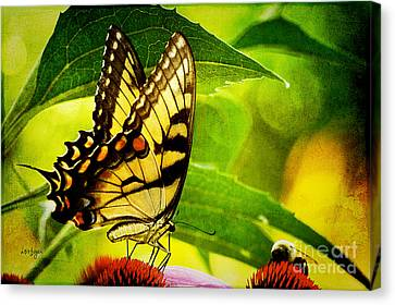Dining With A Friend Canvas Print by Lois Bryan