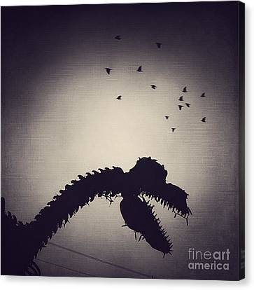 Dino In The City Canvas Print by Trish Mistric