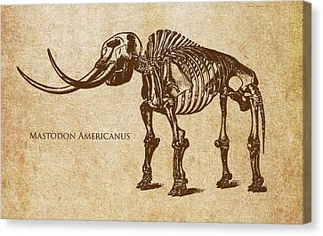 Dinosaur Mastodon Americanus Canvas Print by Aged Pixel