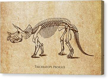 Dinosaur Triceratops Prorsus Canvas Print by Aged Pixel