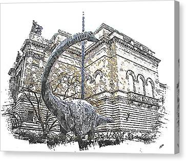 Dippy Canvas Print by Spencer McKain
