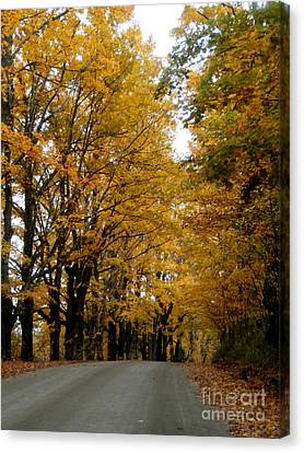 Dirt Road Colors Canvas Print by Steven Valkenberg