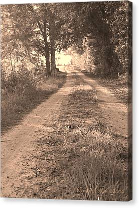 Dirt Road In Moultrie Georgia Canvas Print