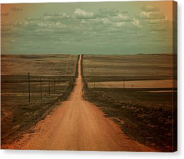 Dirt Road Canvas Print by Leland D Howard