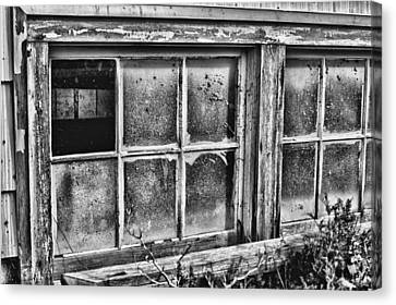 Dirty Windows Canvas Print