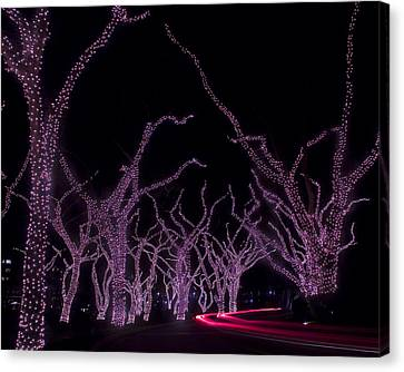Canvas Print featuring the photograph Disco Trees by Jim Snyder