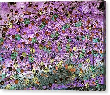 Discs  Canvas Print by Dietrich ralph  Katz
