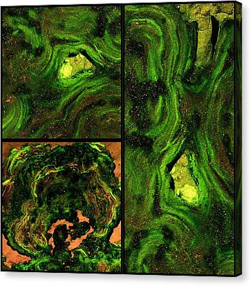 Collage Tapestries - Textiles Canvas Print - Disengage by Tom Druin