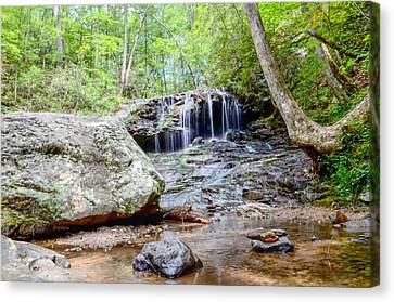 Disharoon Creek Falls Canvas Print by Bob Jackson