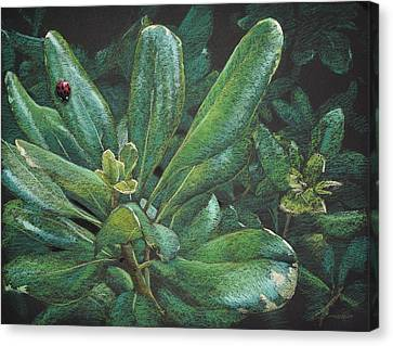Dispensing With Camouflage Canvas Print by Christopher Reid