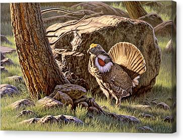 Displaying--blue Grouse Canvas Print by Paul Krapf