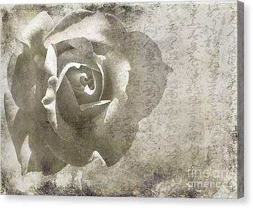 Canvas Print featuring the photograph Distant Dreams by Ellen Cotton